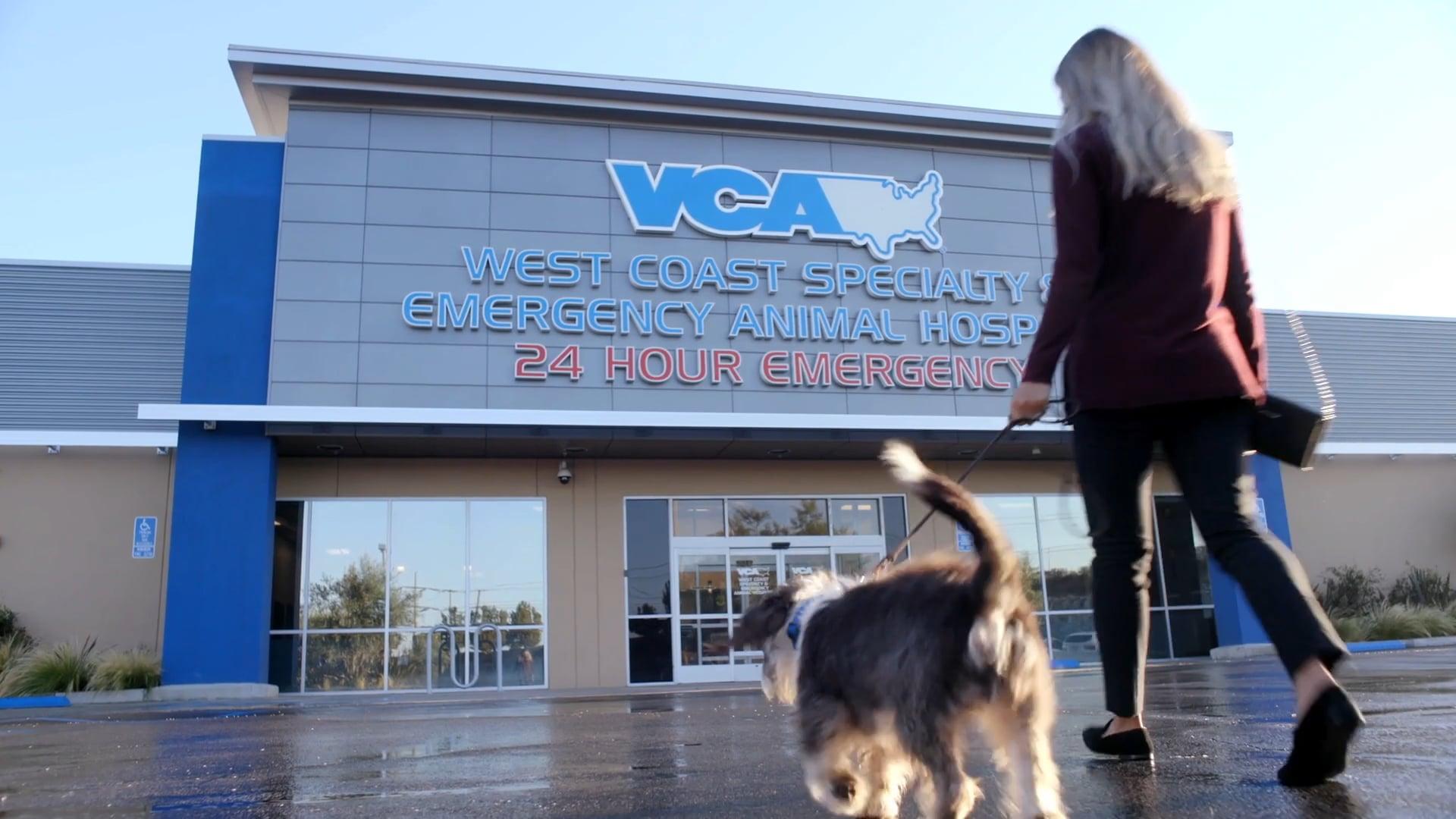 VCA-Client Journey