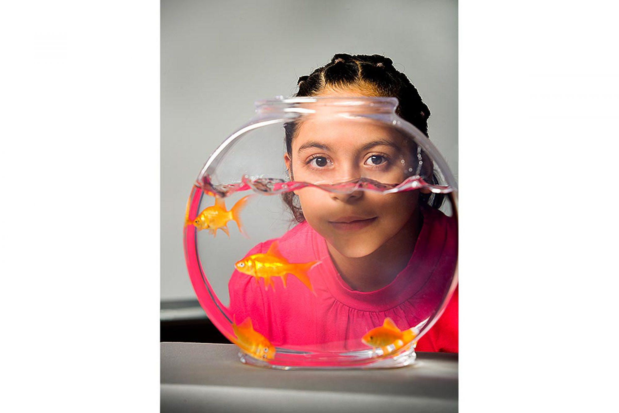 fishbowl_need-better
